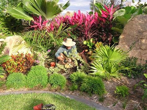 Backyard Landscaping Ideas Queensland Beautiful Tropical Garden Ideas Queensland Gardens On
