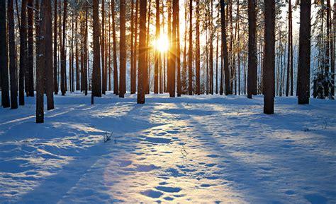imagenes de un invierno 191 qu 233 es invierno su definici 243 n concepto y significado