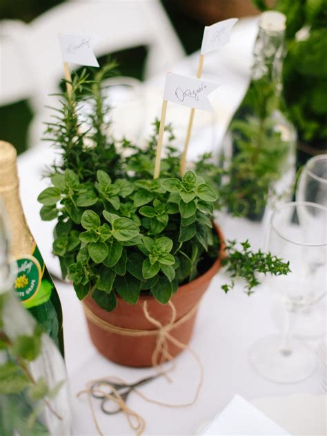 Pot Plant Baby how to make diy herb pot centerpieces and favors
