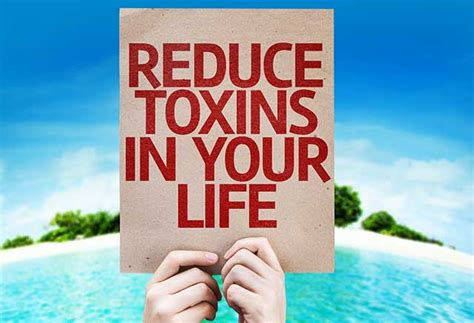 Toxins Removed By Detox Diet by Detox From Environmental Toxins Safely Lombino