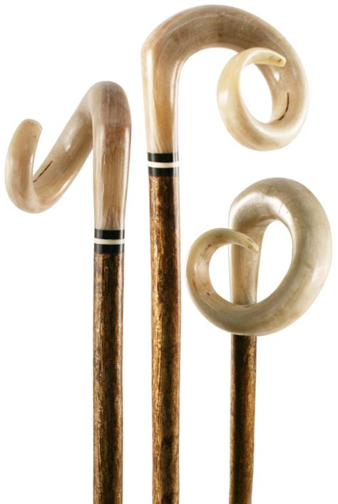 Handmade Shepherds Crooks - curled carved rams horn shepherds crook on hazel shaft