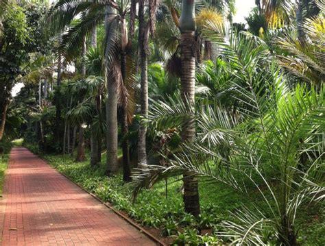 durban botanic gardens durban team building venue durban botanic gardens