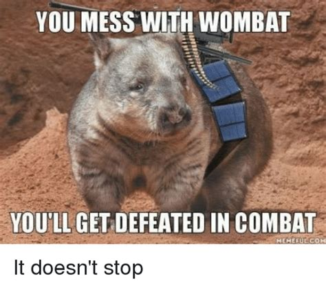 Wombat Memes - you mess with wombat you ll get defeated in combat memefue