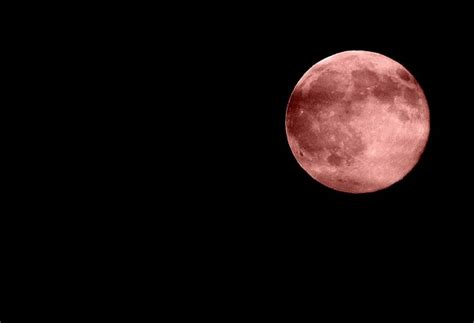 pink moon when and what exactly is the pink moon lighthouse news