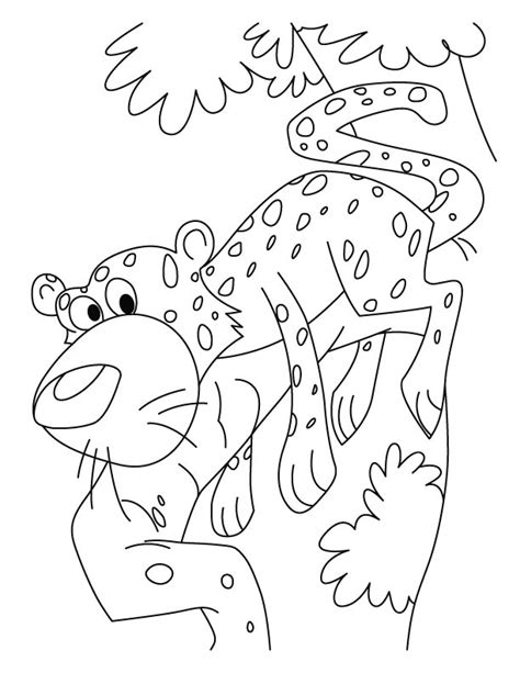 free coloring pages of boa constrictor