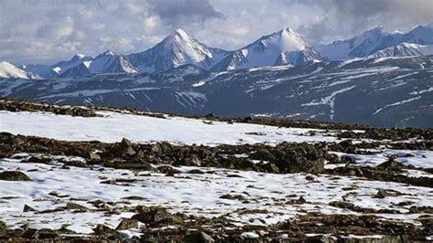 bioma tundra pengertian proses ciri ciri jenis iklim
