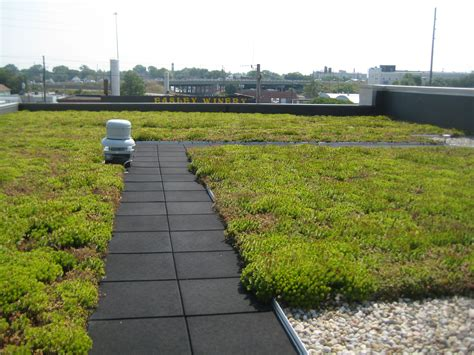 rooftop plants storm water drainage rain gardens operation church