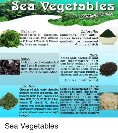 Chlorella For Copper Detox by Sea Vegetables Wakame Chlorella Source Of Magnesium