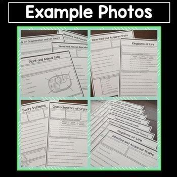 science worksheets about the duo you. science. best free