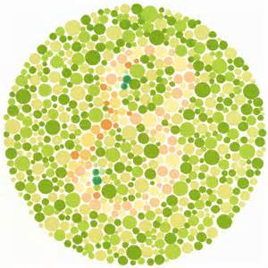 color vision colors and color vision on