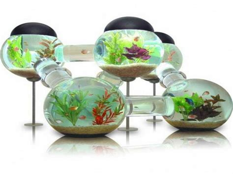 innovative decorations indoor unique and innovative fish tank designs ideas how