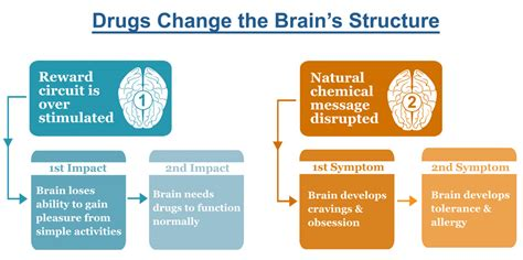 Brain Detox Symptoms by Physical Addiction Symptoms Physical Dependence Hamrah