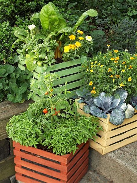 container veggie gardening ideas decocasa en colombia 187 macetas
