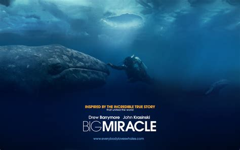 Miracle Hd Big Miracle Wallpapers 1920x1200 Wallpapers