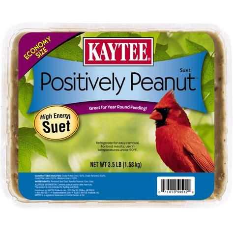 positively peanut suet wild bird suet kaytee
