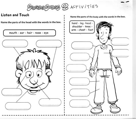 Worksheets For Students Learning by Human Worksheets For Learning Printables