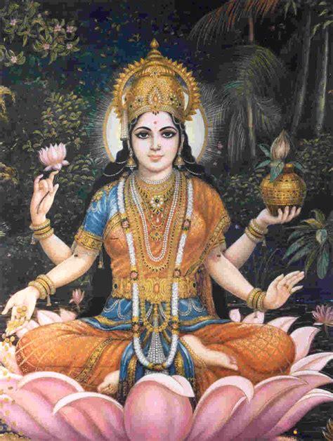 Laxmi Lotus Lakshmi The Anglo Hindu