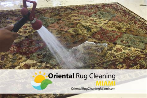 rug cleaners miami area rug cleaning miami smileydot us