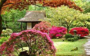 japan flowers spring japanese garden asian wallpaper