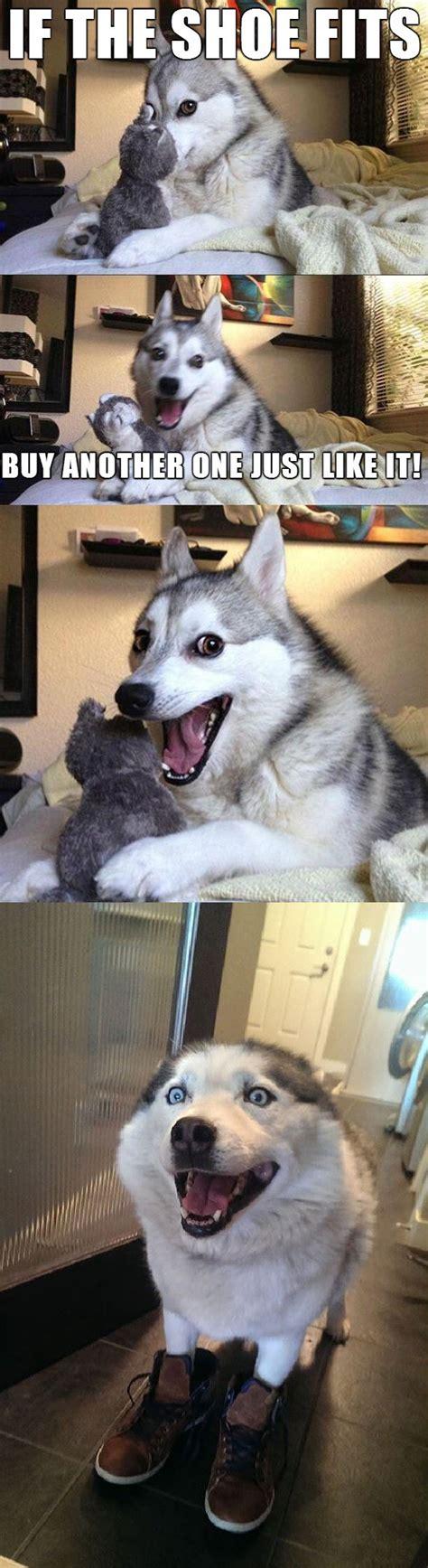 Pun Husky Meme - husky bad pun meme imagefiltr
