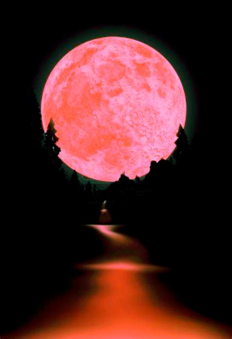 what is a pink moon tarocchi e streghe by princessesmy una cosa accade
