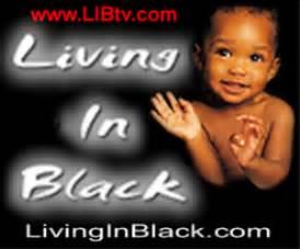 black dollars matter jim clingman black dollars matter direct response to