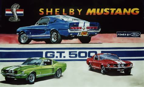 mustang college rip shelby