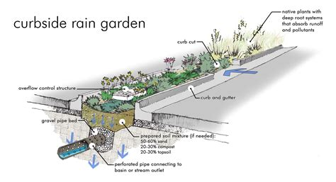 rain garden section water ideas bioswale section inspiration utopian net