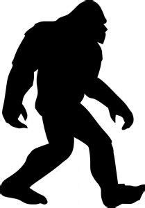 1000+ images about bigfoot on pinterest | bigfoot