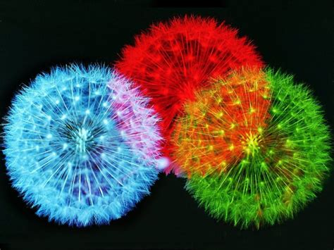 firework colors beautiful wallpaper 11 free color fireworks wallpapers