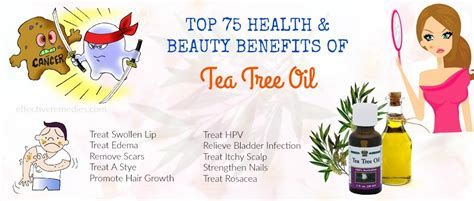 is pure tea tree oli good for ingrowing hairs is pure tea tree oli good for ingrowing hairs get rid of