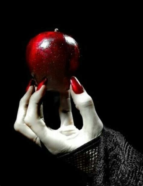snow white poison apples vintage red apple metal canisters 863 best images about don t eat the apple on pinterest