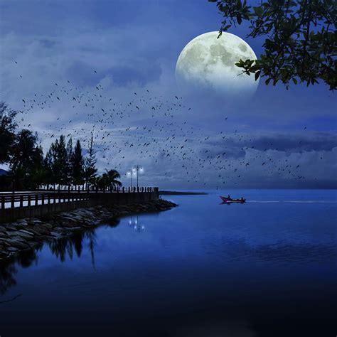 rock the boat forrest lyrics free photo moon sea blue ocean nature free image on