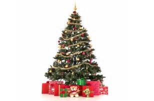 Christmas Trees Homebase - christmas trees log un sticks firewood suppliers