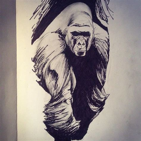 gorilla tattoo designs 25 best ideas about gorilla on gorilla