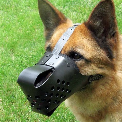 comfortable muzzles for dogs jafco comfortable dog muzzle dog training supply