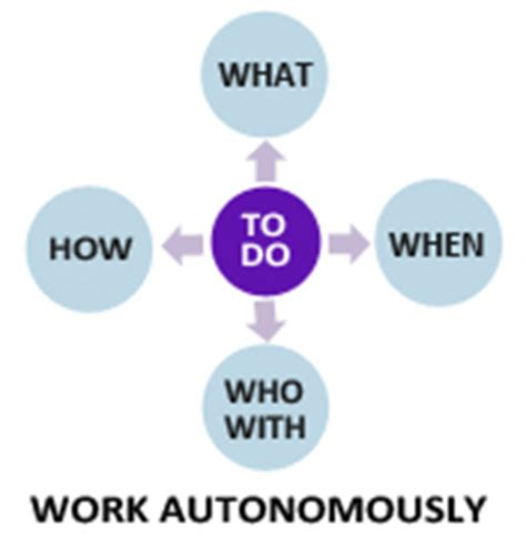 graduate attribute 7 work both autonomously and