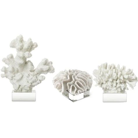 white coral on glass stand 149 liked on polyvore