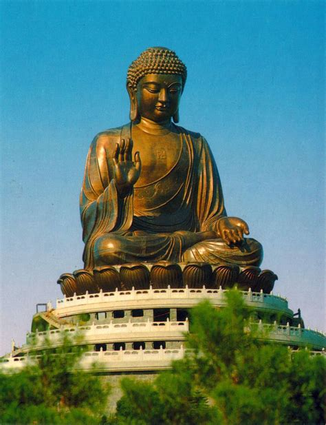 for the of buddha harsh