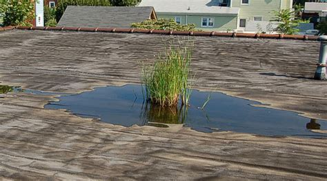 on roof what is ponding roof water how do i if i it armorgarage