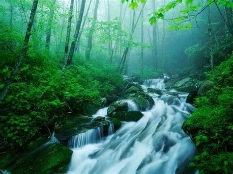 imagenes naturaleza zen naturaleza hd taringa