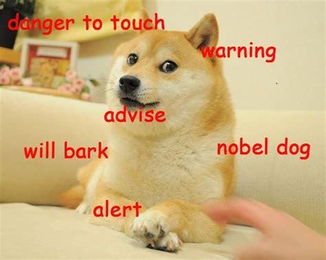 Doge Meme Shiba - best 25 doge meme ideas on pinterest doge funny doge