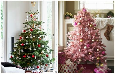 in coc xmas tree in 2016 real vs trees how to choose the best tree