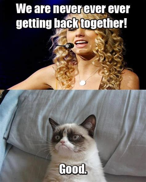 Angry Cat Meme Good - good grumpy cat know your meme