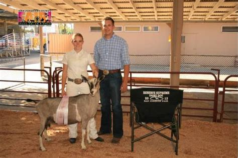 yankee doodle farm indiana goatzz goat farm located in tracy california owned by