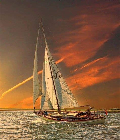 sailboat in sunset famous sailboat under sails j class racing america s cup