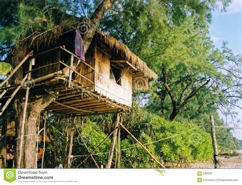 Stilt House Designs baumhaus stockfotografie bild 298322