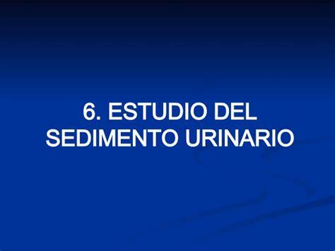 analisi sedimento urinario ud 18 iv an 225 lisis sedimento urinario ppt