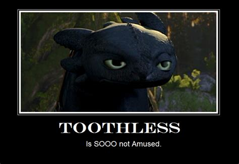 Toothless Meme - toothless funny memes