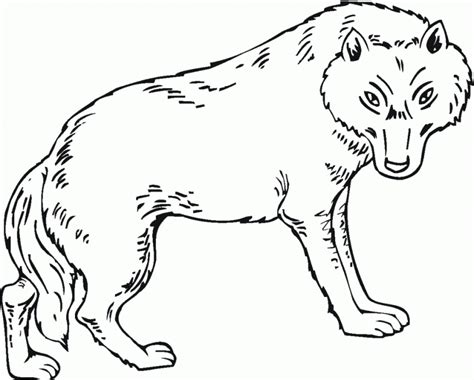 peter and the wolf coloring pages az coloring pages
